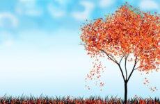 Więcej o: Powitanie jesieni